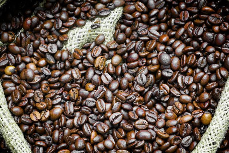 Roasted coffee beans falling in a burlap sack. Sackcloth bag with coffee beans, background. Coffee export royalty free stock images