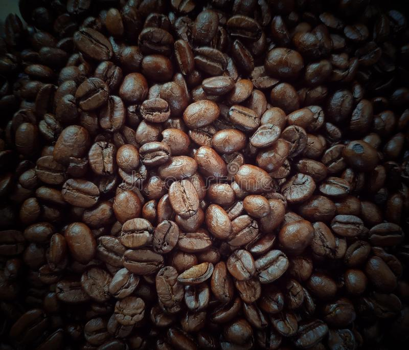 Roasted coffee beans, full frame image. stock photography