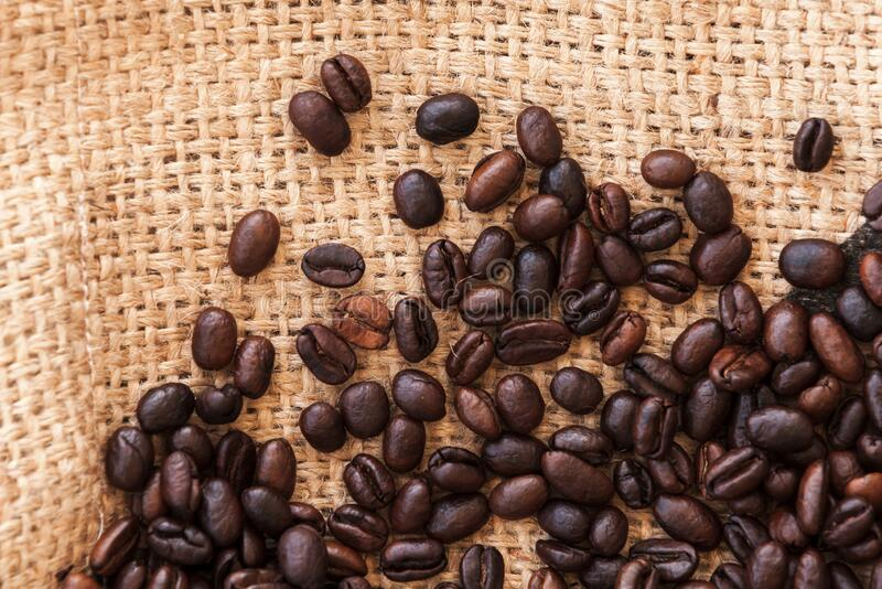 Roasted coffee beans are on jute bag fabric. Flat lay royalty free stock images
