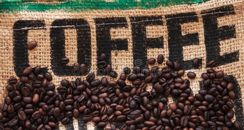 Roasted coffee beans are on jute bag fabric with text royalty free stock image