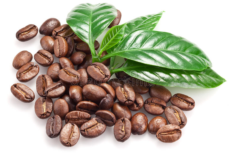 Roasted coffee beans and leaves. royalty free stock photos