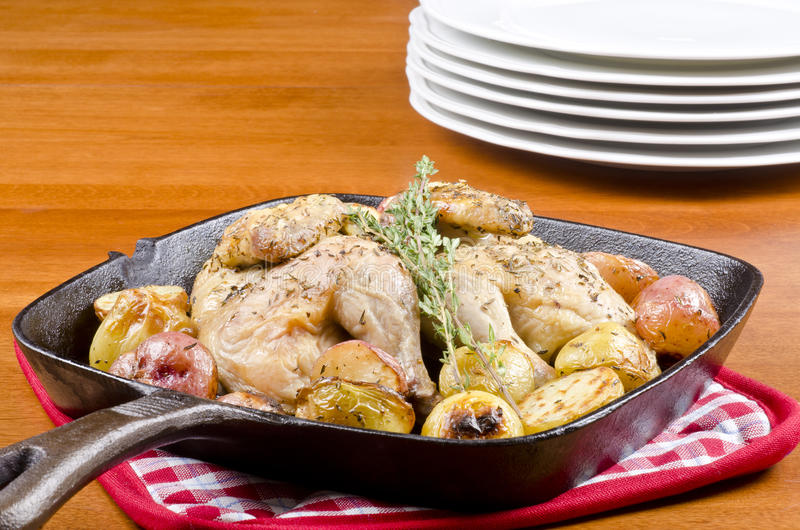 Download Roasted Cornish Game Hen And Potatoes Stock Image - Image of iron, table: 22086617