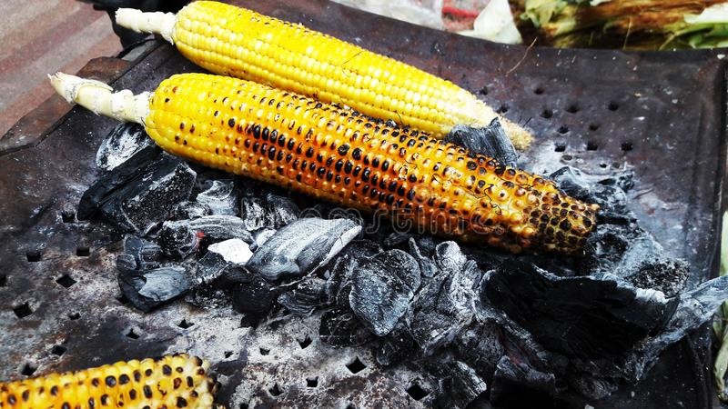 Roasted corns closeup image isolated on fire. Alternative, ripe, nature, science, summer, growth, industry, plant, lifestyle, fuel, scene, snack, eating stock photos