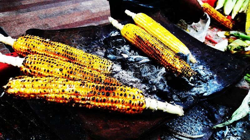 Roasted corns closeup image isolated on fire. Alternative, ripe, nature, science, summer, growth, industry, plant, lifestyle, fuel, scene, snack, eating royalty free stock photography