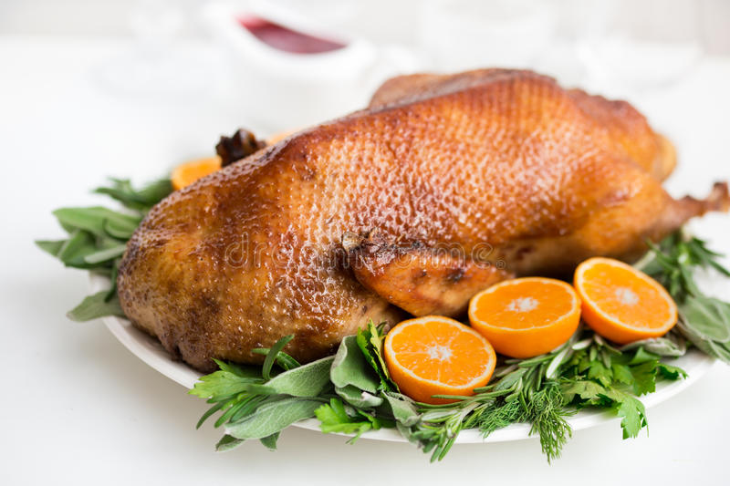 Roasted duck in honey glaze with spicy herbs and tangerines royalty free stock photography