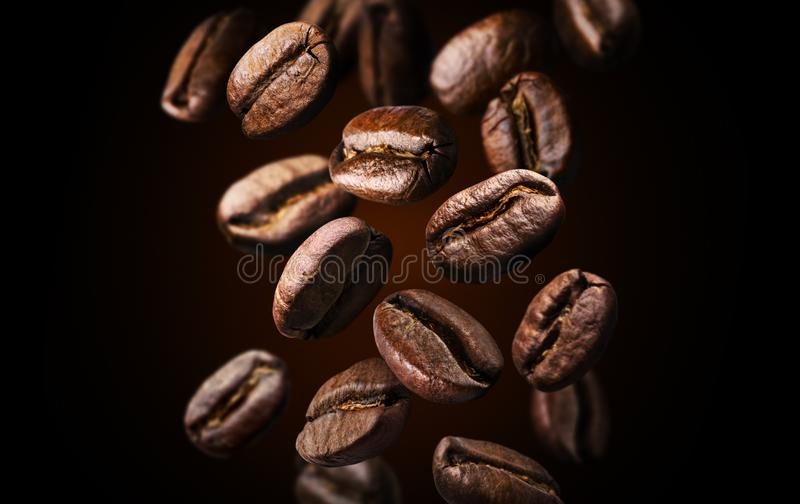 Roasted falling or flying coffee beans on black background, close up, brown texture royalty free stock image