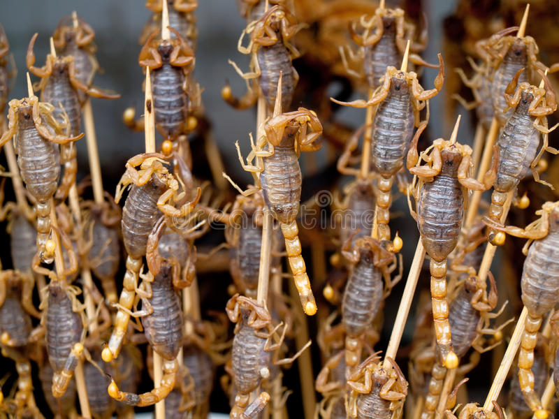 Roasted fried insects and scorpions and bugs as snack street foo royalty free stock image