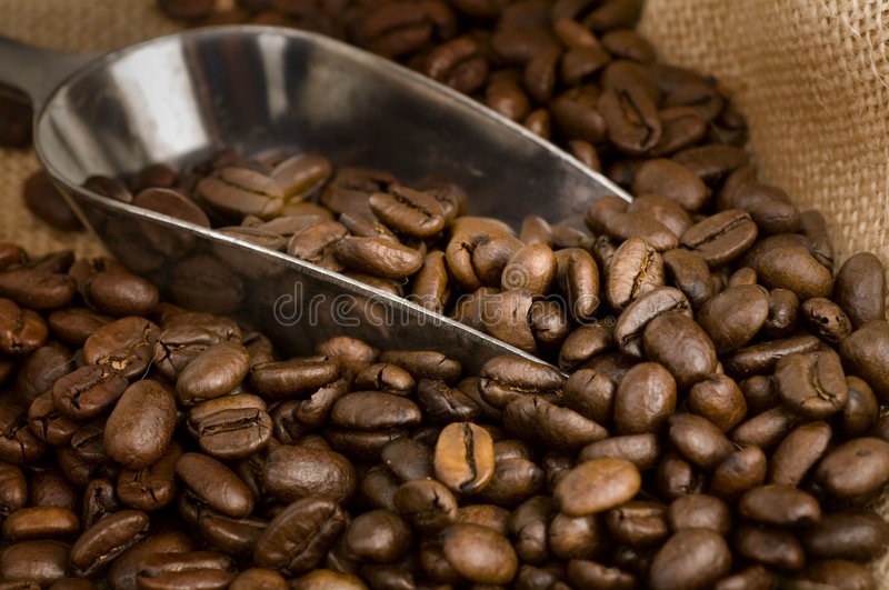 Download Roasted Golden Brown Coffee Beans Stock Photos - Image: 9015863