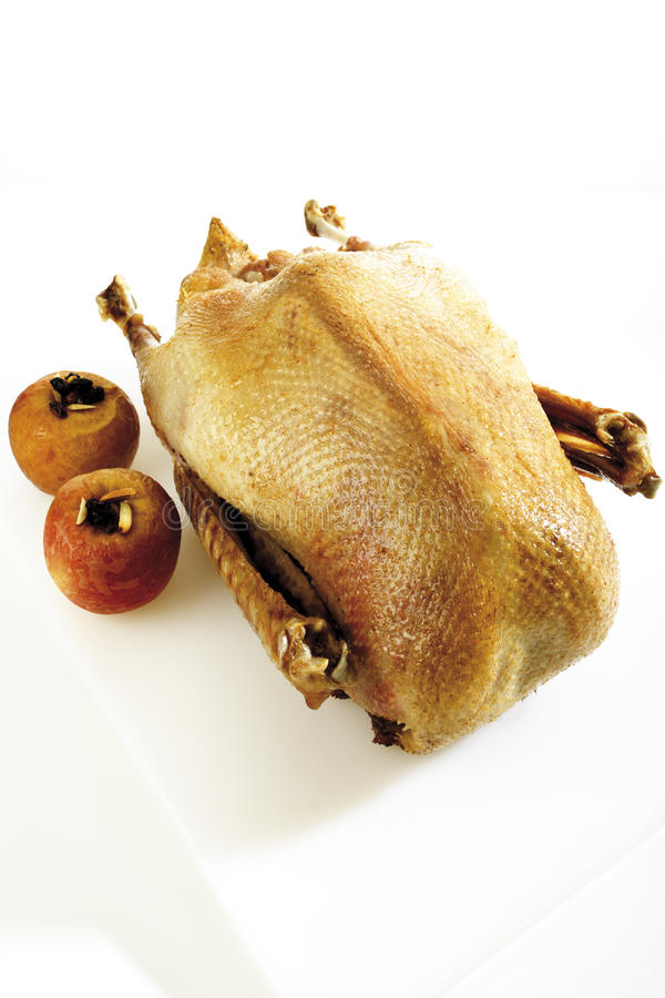 Roasted goose, elevated view stock images