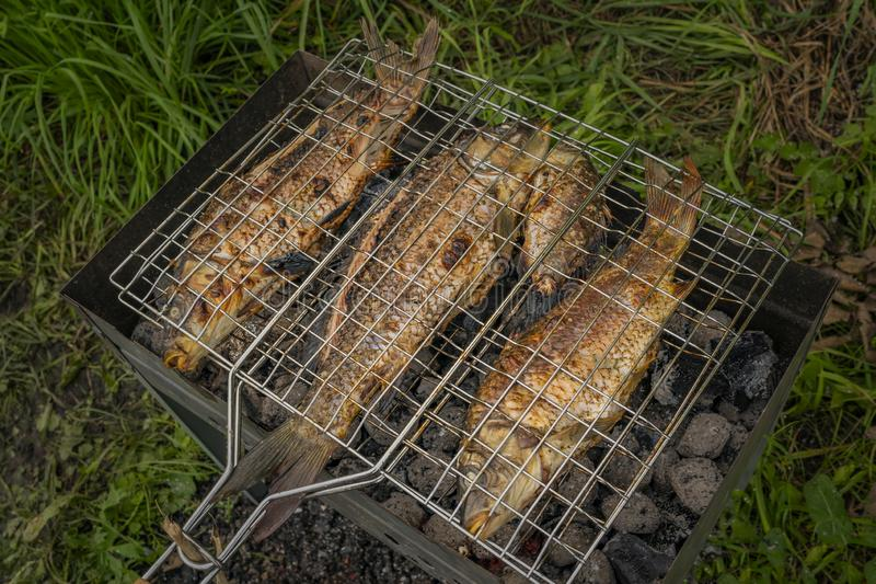 Roasted on grill fresh fish. Carp baked on BBQ.  royalty free stock photos