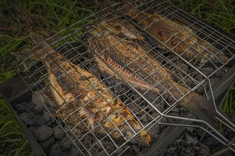 Roasted on grill fresh fish. Carp baked on BBQ.  stock image