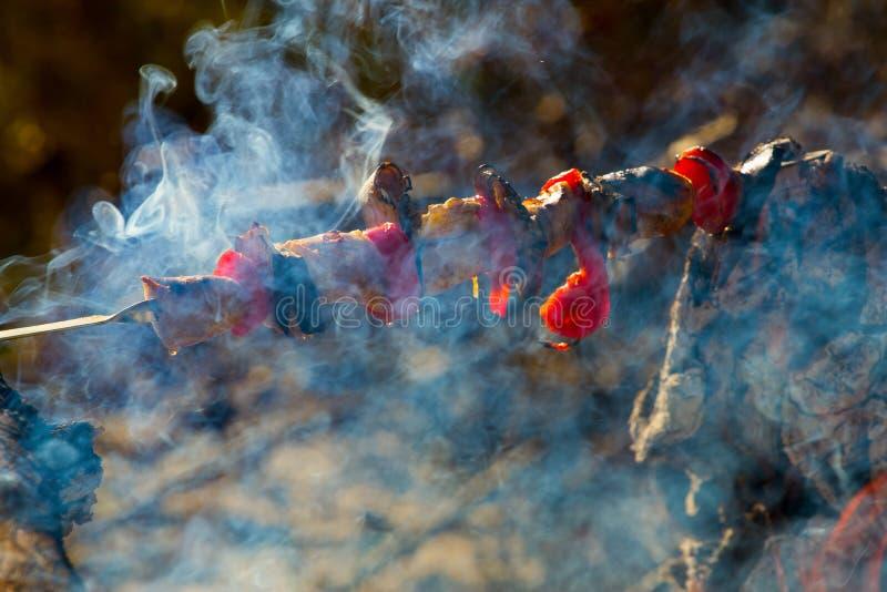 Roasted grillade tomaten, aubergine på pinnen på den öppna branden arkivfoto
