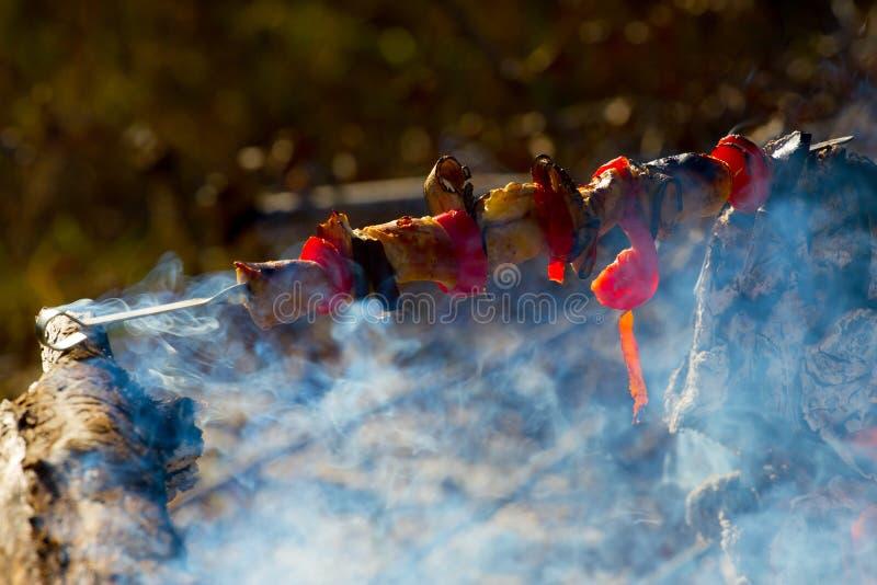 Roasted grillade tomaten, aubergine p? pinnen p? den ?ppna branden royaltyfria bilder