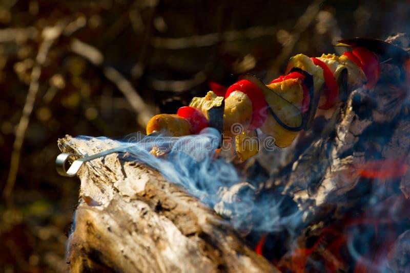 Roasted grillade tomaten, aubergine p? pinnen p? den ?ppna branden fotografering för bildbyråer