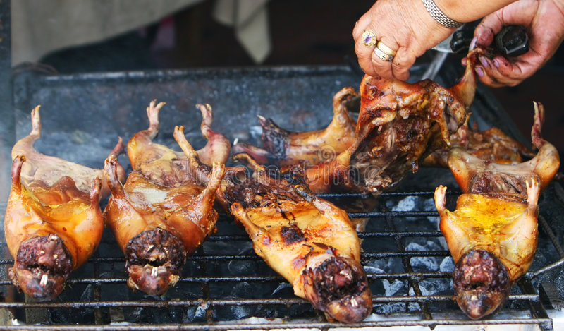 Roasted Guinea Pigs in Ecuador royalty free stock photo