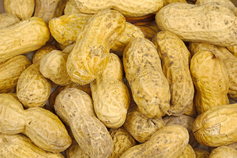 Download Roasted Nuts stock image. Image of peanut, crunch, snack - 188277