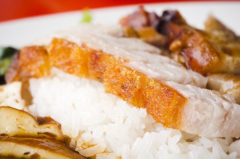 Download Roasted pork rice stock photo. Image of dishes, pork - 20091738
