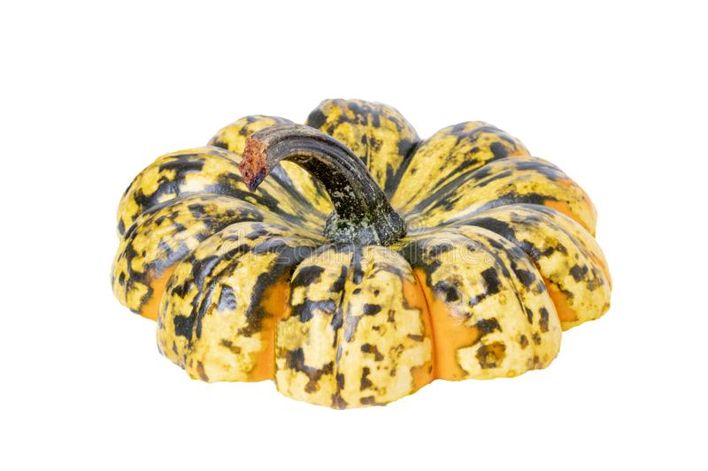 Roasted pumpkin. Close-up of the cut-off head of a pumpkin used to cover the dish served in the pumpkin.  Isolated on a white royalty free stock image