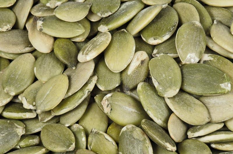 Roasted pumpkin seeds stock photography