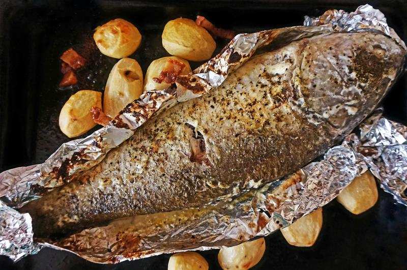 Roasted river fish `silver carp` in foil. stock images