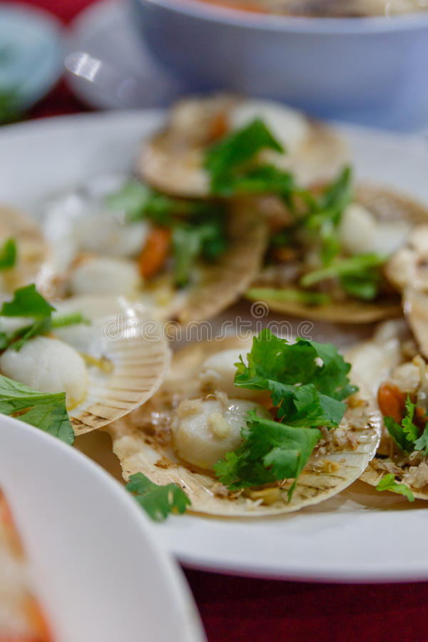 Roasted Scallops with Butter and Garlic. Topping with Coriander royalty free stock images