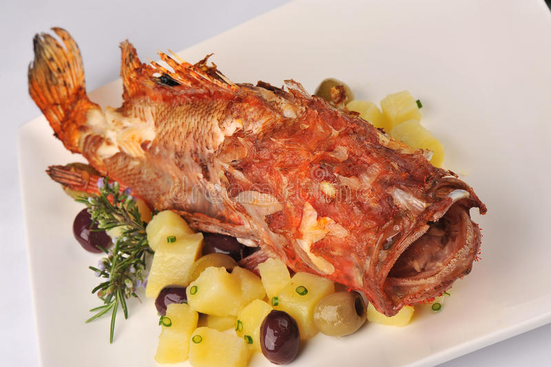 Roasted scorpion fish. With baked potatoes stock photos