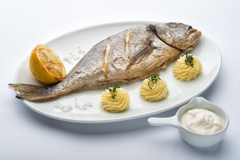 Roasted sea bass. Roasted sea bass on the plate. Lemon mashed potatoes stock image
