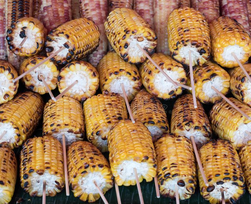 Roasted sweet corn with the wooden skewer. royalty free stock photography