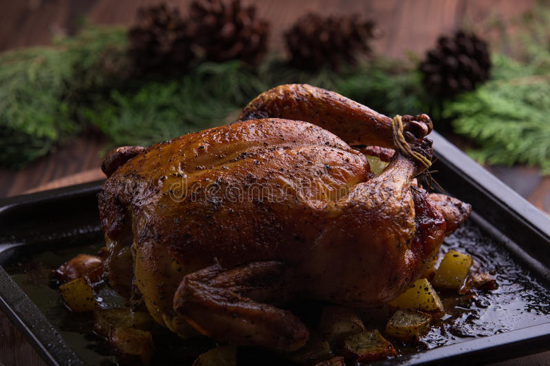 Roasted whole chicken / turkey for celebration and holiday. Christmas, thanksgiving, new year's eve dinner royalty free stock images