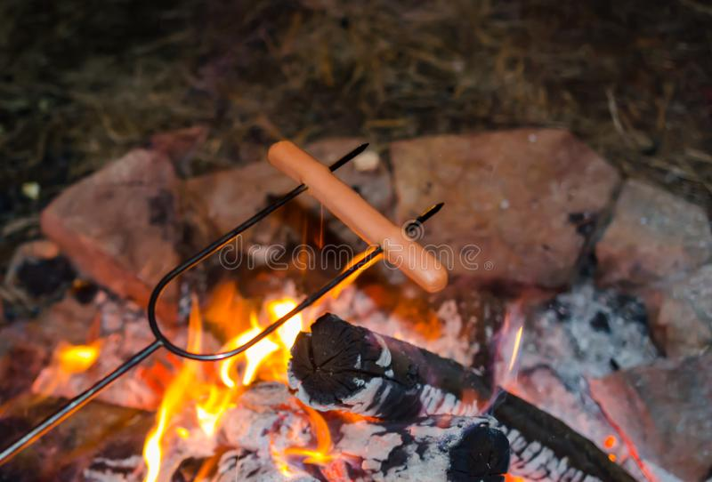 Roasting hot dogs over campfire. Fun and relaxation of preparing food and camping outdoors. Relax and recreation in natures beautiful outdoor setting stock photo