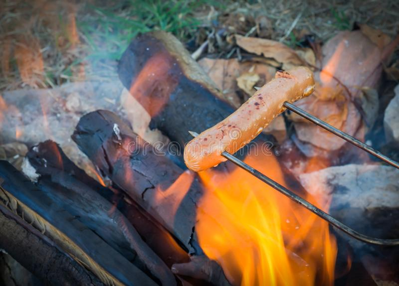 Roasting hot dogs over campfire. Fun and relaxation of preparing food and camping outdoors. Relax and recreation in natures beautiful outdoor setting stock images