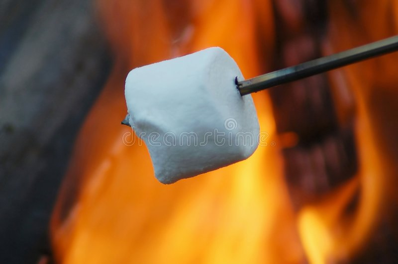 Roasting Marshmallow royalty free stock photography