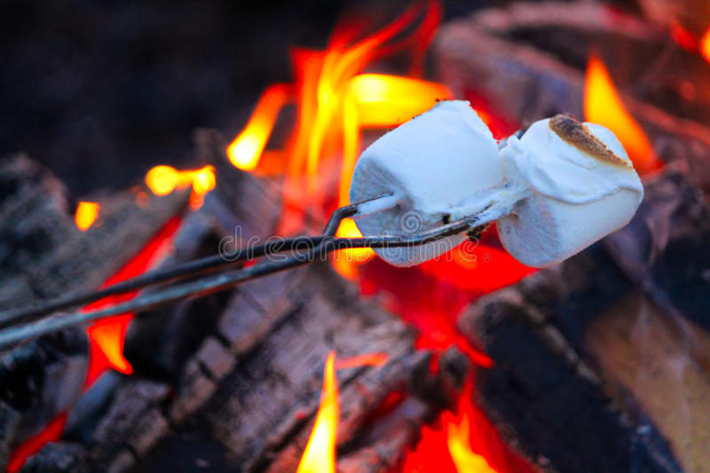 Download Roasting Marshmallows For Smores Over A Colorful Campfire Stock Photo