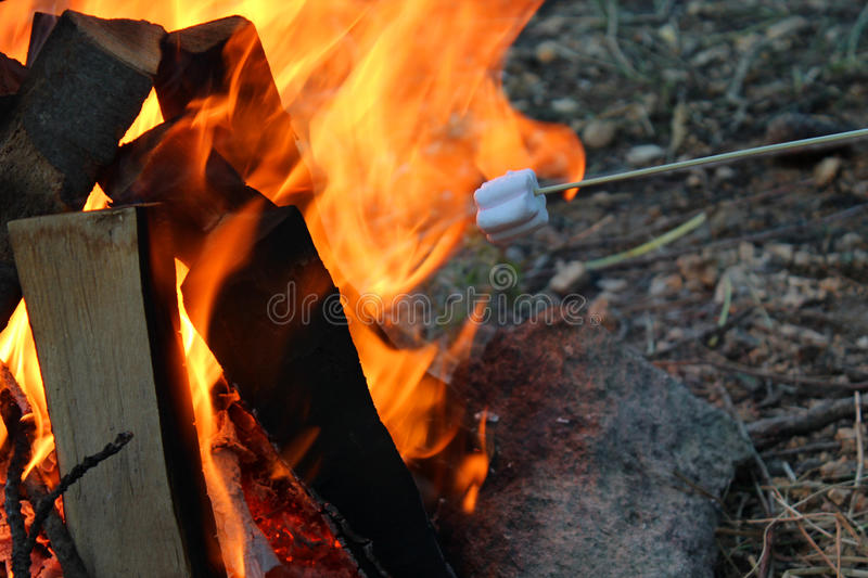 Marshmallows on Campfire stock photography