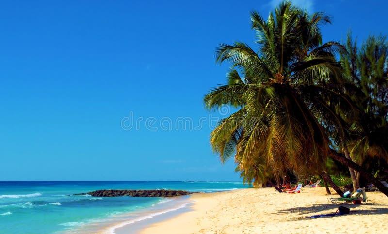 Roatan洪都拉斯海滩  图库摄影