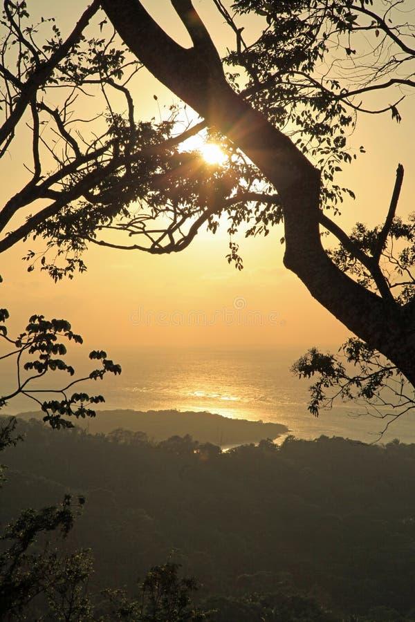 Roatan solnedgång royaltyfri fotografi