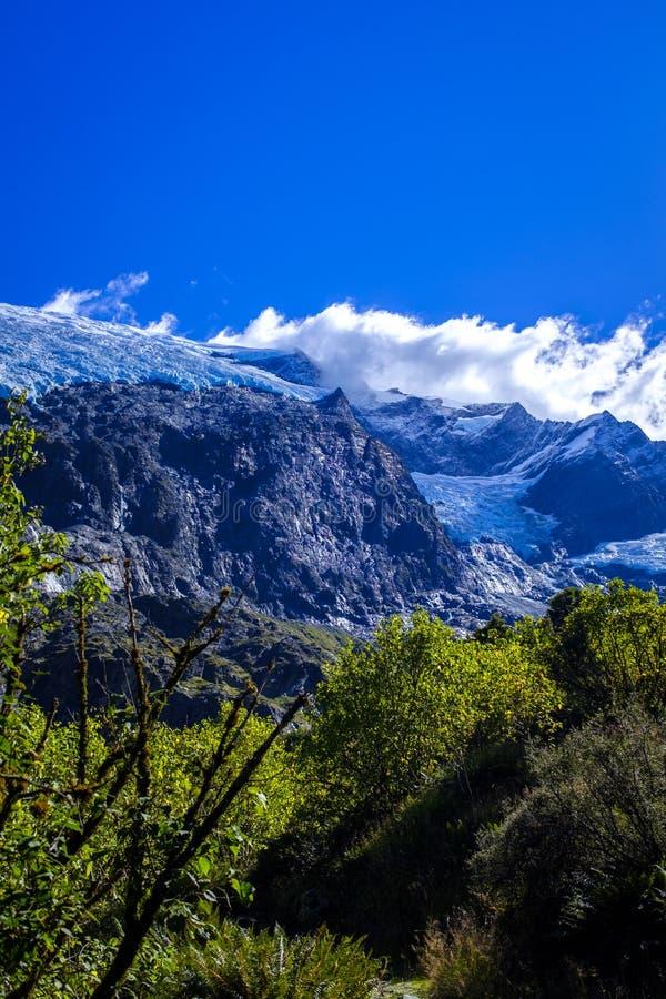 Rob Roy Glacier in Nieuw Zeeland stock afbeeldingen