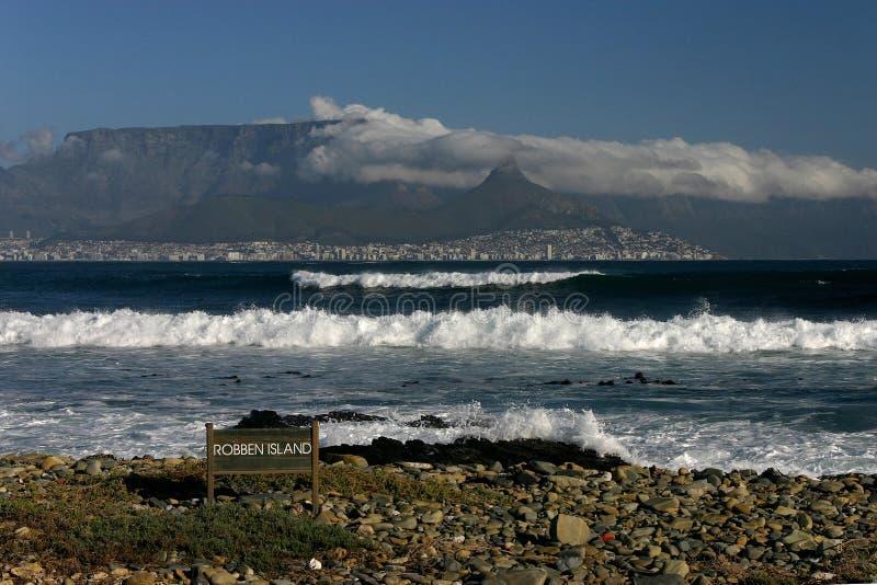 Robben Insel lizenzfreies stockfoto