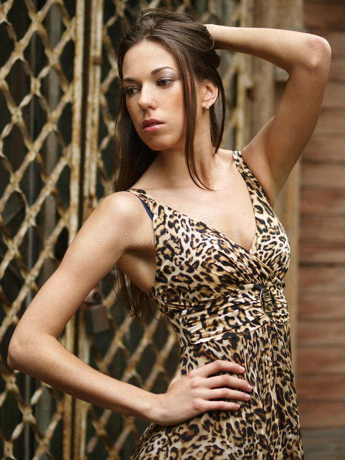Robe de léopard images stock