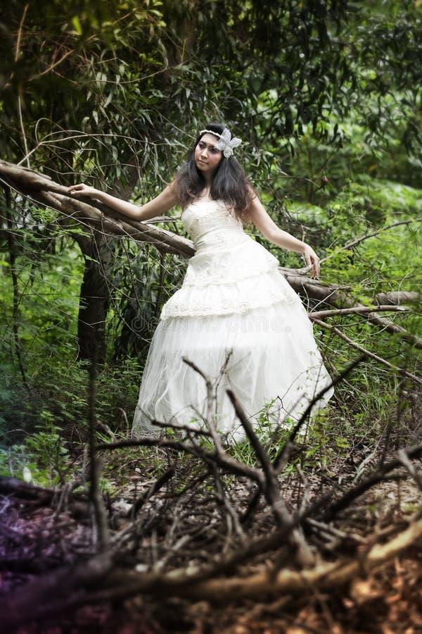 Robe de mariage images stock