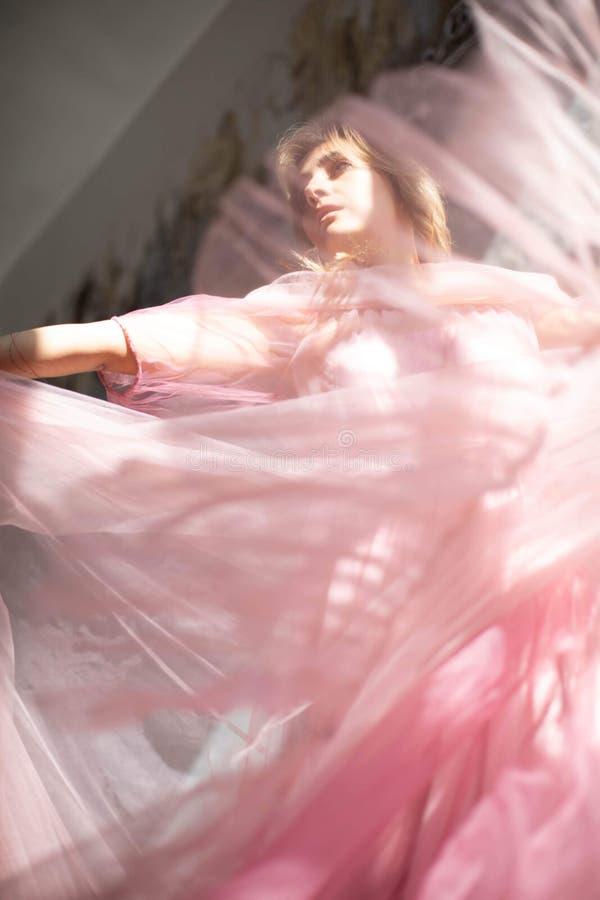 Robe rose de cygne, moment gel? images libres de droits