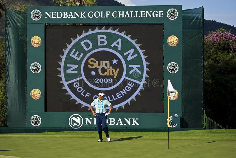 Robert Allenby - desafio do golfe de Nedbank foto de stock royalty free