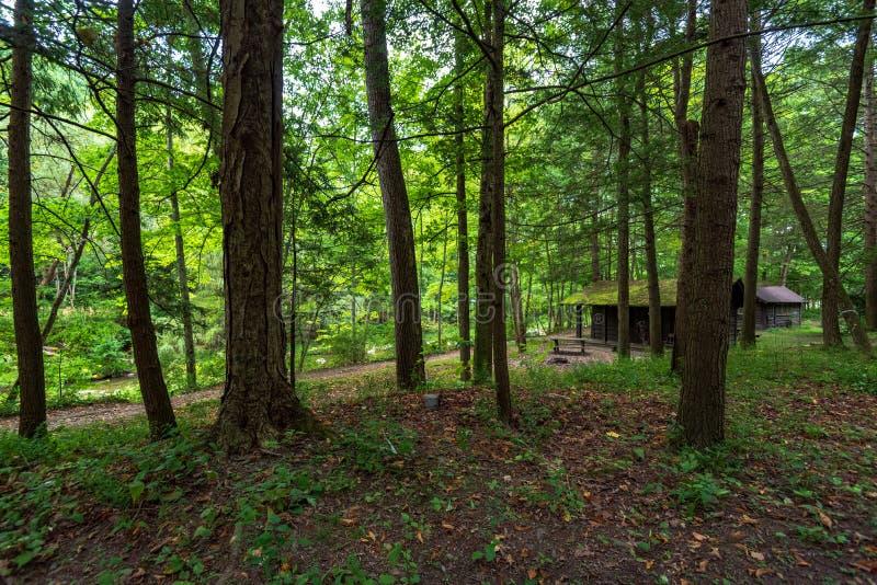 Robert H Parco di stato di Treman: Cabine fotografie stock