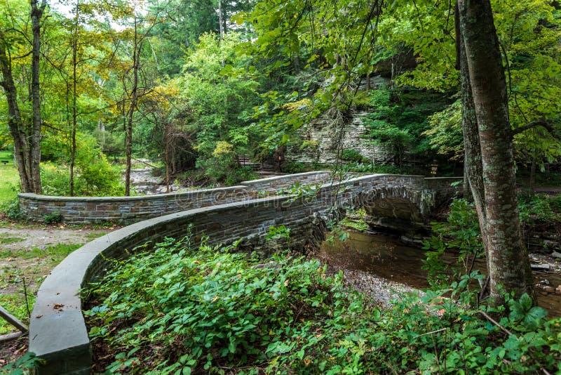 Robert H. Treman State Park: Gorge Trail stock photo