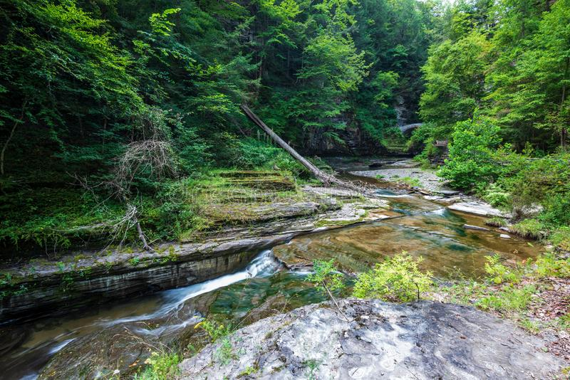 Robert H. Treman State Park: Gorge Trail royalty free stock photos