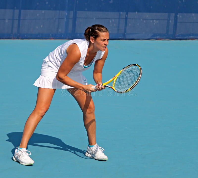 Free Roberta Vinci (ITA), Professional Tennis Player Stock Image - 11673861