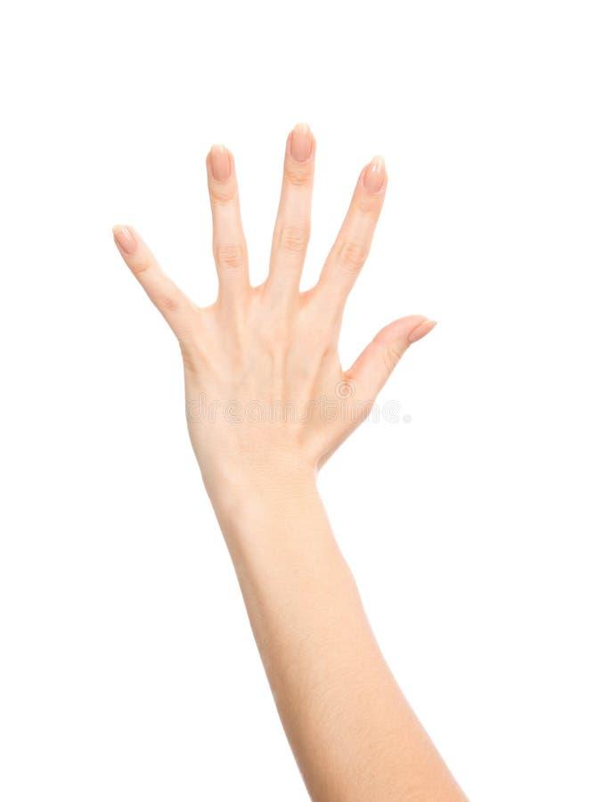Robiący manikiur żeńscy ręka gesta liczby pięć palce up fotografia stock