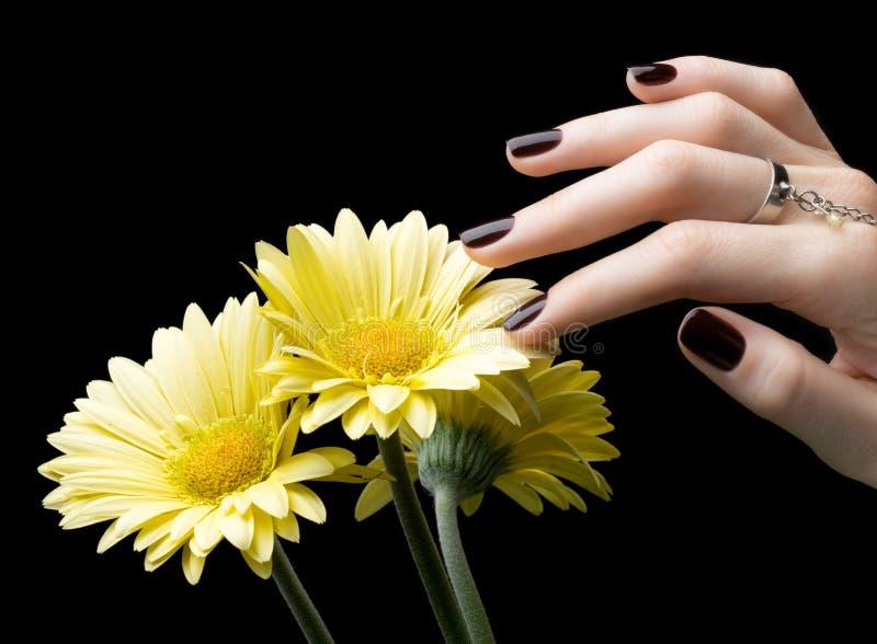 Robiący manikiur gwóźdź z Czarnym Matte gwoździa połyskiem Manicure z zmrokiem zdjęcie stock