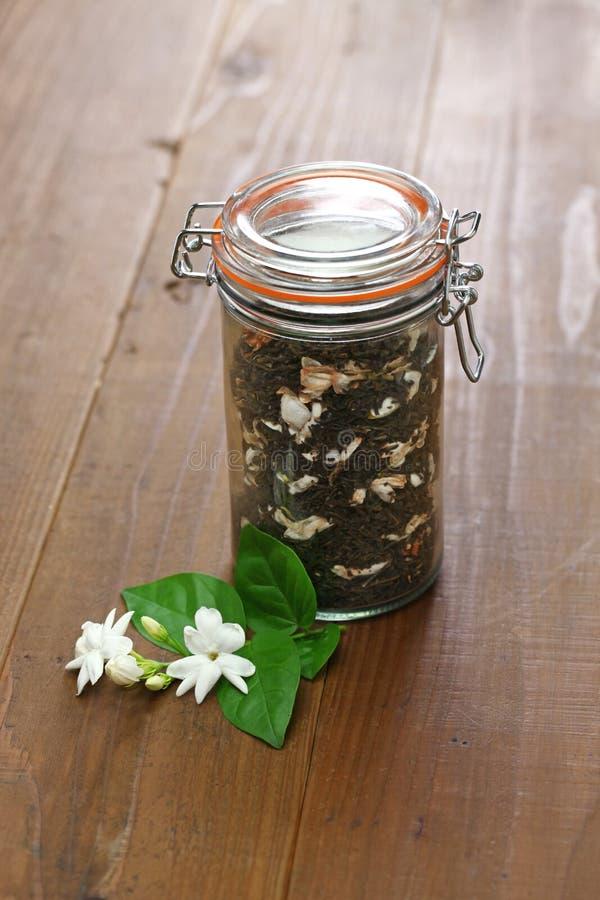 Robić jaśminowej herbaty, zielona herbata z arabskiego jaśminu kwiatem zdjęcie royalty free