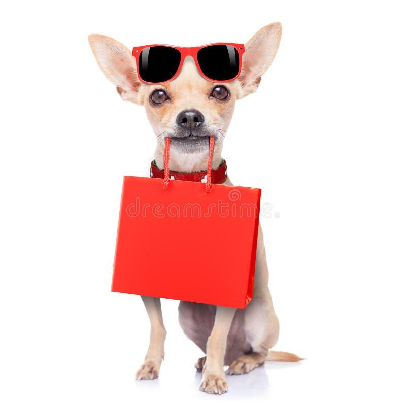 Robić zakupy psa obrazy stock